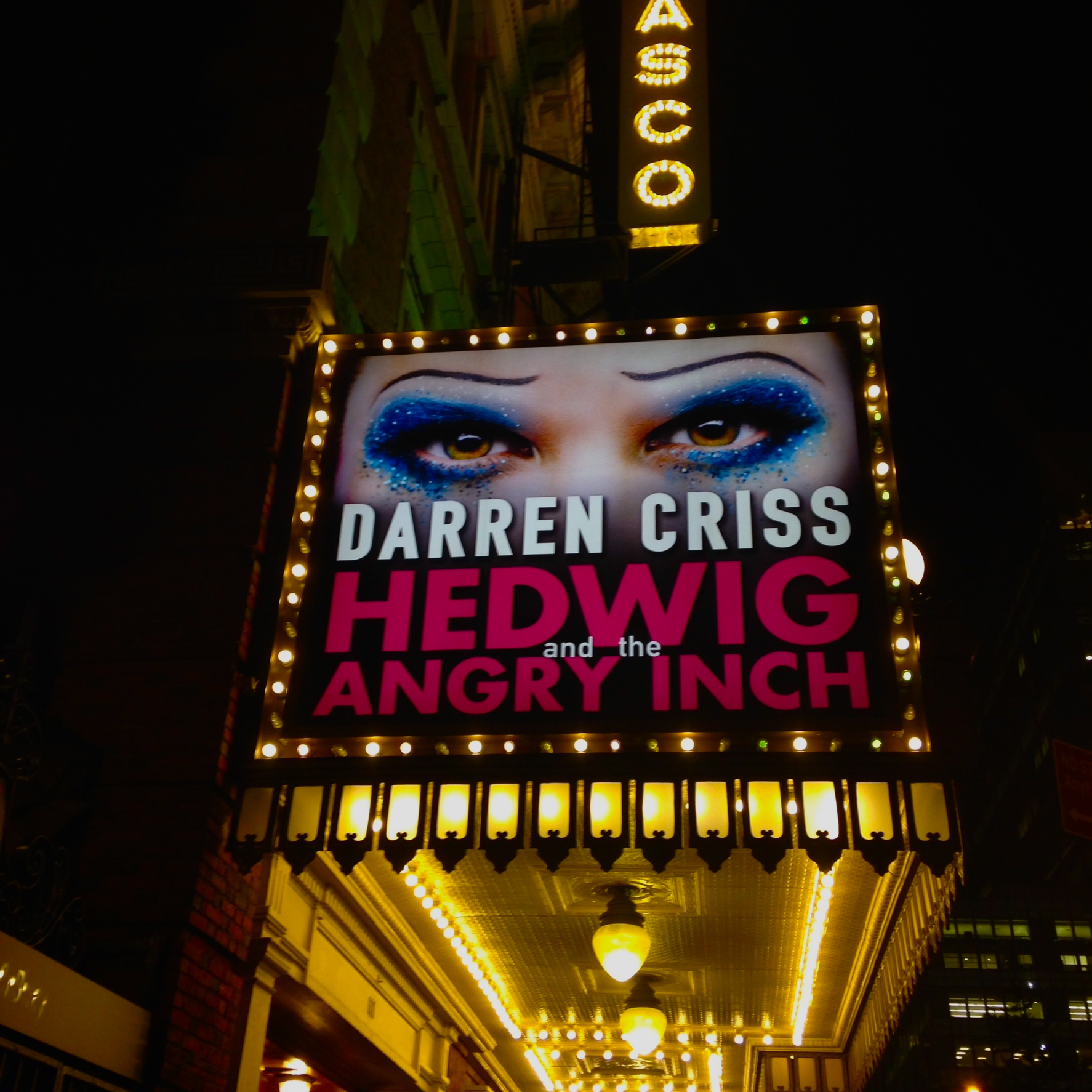 What broadway show should you see girl sees the world hedwig and the angry inch biocorpaavc