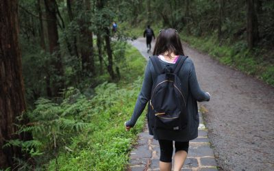 Melbourne's Best Hike: The 1000 Steps