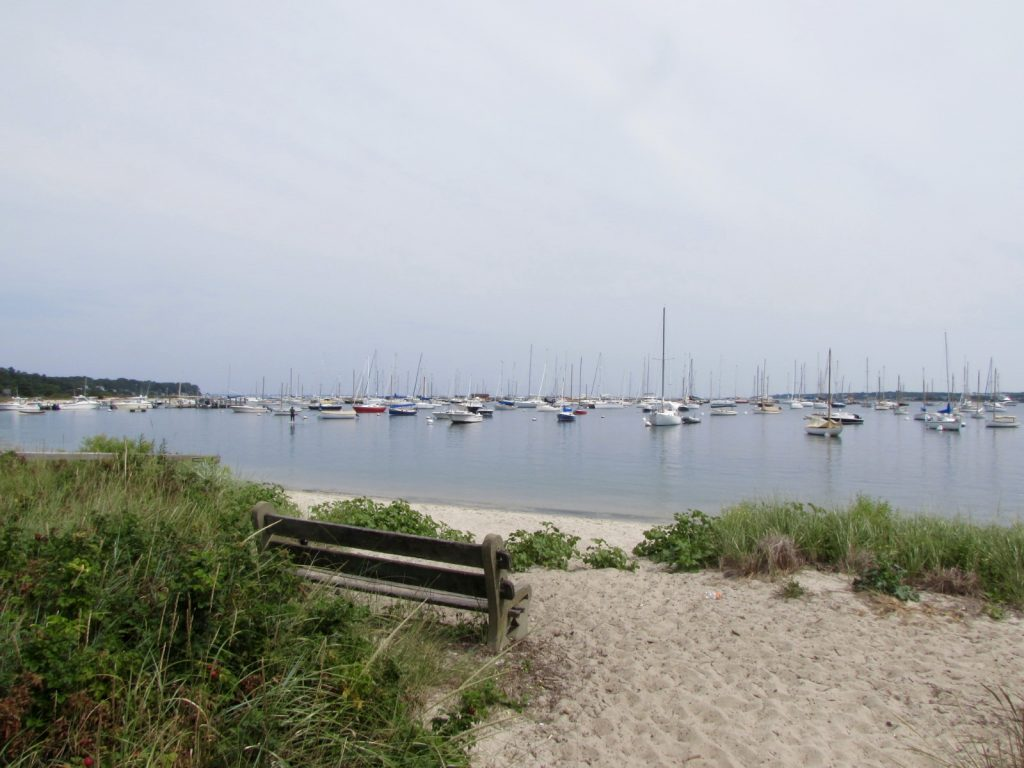 day on Martha's Vineyard