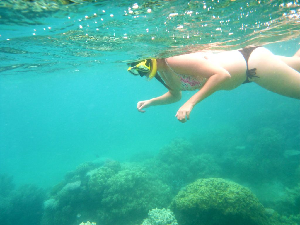 snorkel great barrier reef australia